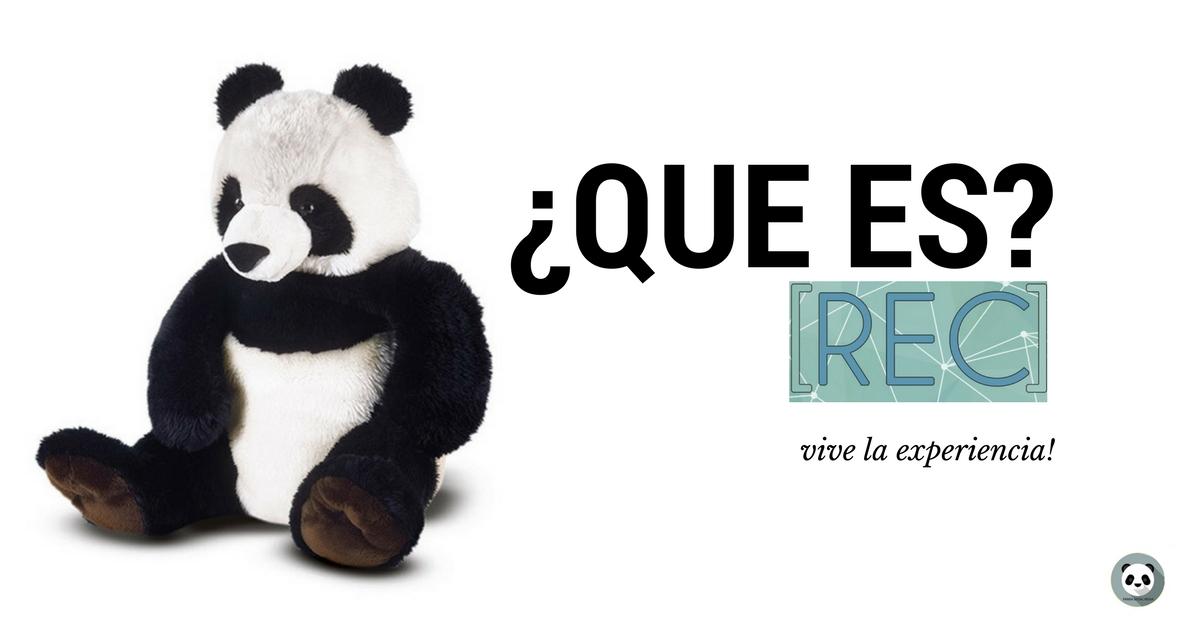 ¿Que es REC? Red de Empresarios de Cartagena